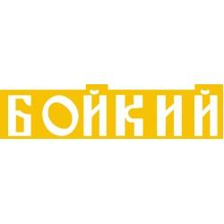 Boikiy 72nd scale nameplate