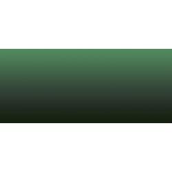 LifeColor Liquid Pigment Fouling Green (22ml)